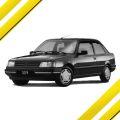 Кузовной ремонт Пежо 309 (Peugeot 309) в СПб